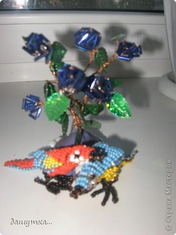 давненько делала захотелось выложить попугайчики