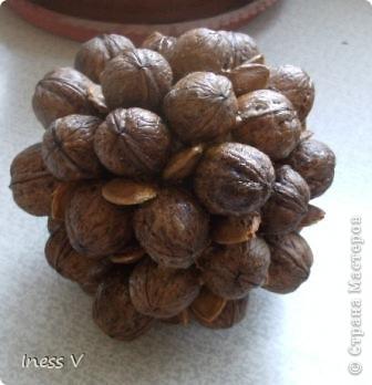 Ореховый топиарий  по примеру жительницы  страны   http://stranamasterov.ru/node/366937 !  фото 2