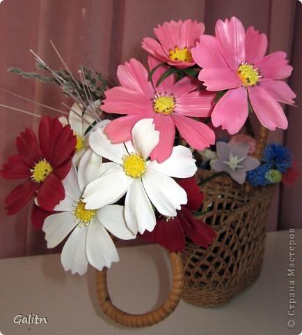 Привет всем!!!!! Вот между *розовыми* заказами слепились вот такие космеи, * цветы детства*. Никакой композиции не делала, просто сложила в корзинку, добавив разноцветья, которое было слеплено раньше. фото 1