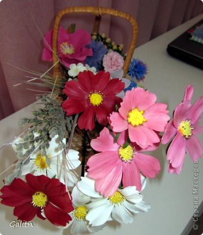 Привет всем!!!!! Вот между *розовыми* заказами слепились вот такие космеи, * цветы детства*. Никакой композиции не делала, просто сложила в корзинку, добавив разноцветья, которое было слеплено раньше. фото 3
