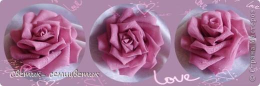 Милые девушки и... девочки! Я продолжаю учиться мастерить розы в технике Цумами Канзаши. Мой первый опыт здесь: http://stranamasterov.ru/node/381384 . Учусь я по МК Полыни: http://stranamasterov.ru/node/269709?c=favorite . фото 4