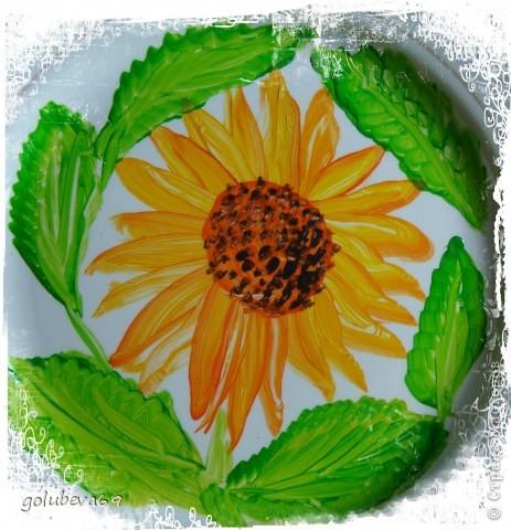 Новый цветочек. фото 4