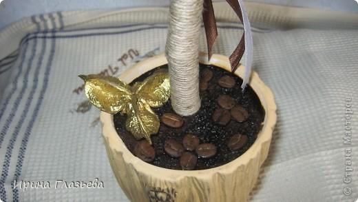 Это деревце я делала в подарок сестре на день рожденья. Она очень любит кофе. На просторах Страны мастеров много подобных деревьев, смотрела, вдохновлялась и вот что у меня из этого вышло... фото 4