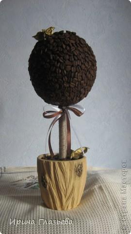 Это деревце я делала в подарок сестре на день рожденья. Она очень любит кофе. На просторах Страны мастеров много подобных деревьев, смотрела, вдохновлялась и вот что у меня из этого вышло... фото 1
