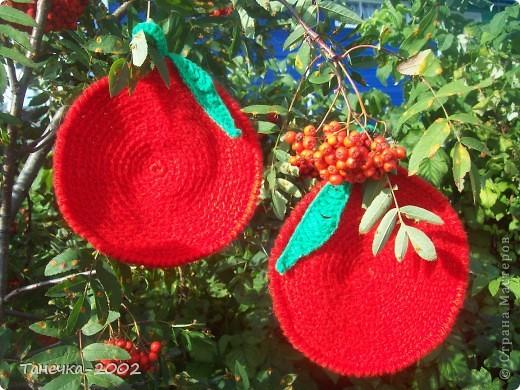 Вот у меня и вырос урожай яблочек для конкурса Елены Гайденко. Так как у нас на севере яблони не растут то мои яблочки выросли вместе с рябинкой. фото 1