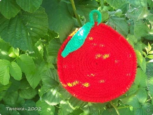 Вот у меня и вырос урожай яблочек для конкурса Елены Гайденко. Так как у нас на севере яблони не растут то мои яблочки выросли вместе с рябинкой. фото 2