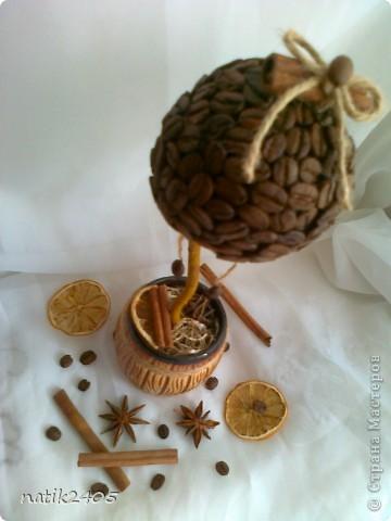 Добрый вечер, дорогие Мастерицы! Сделала еще одно кофейное деревце в подарок подруге!  фото 3