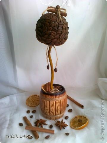 Добрый вечер, дорогие Мастерицы! Сделала еще одно кофейное деревце в подарок подруге!  фото 2
