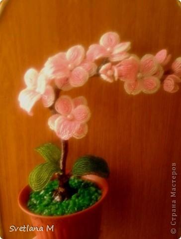 """Добрый вечер ,уважаемые жители С.М.!!!Хочу Вам представить орхидею, сделанна она совместно с моей ученицей, Светланой!!!Приготовили  ее на выставку к дню города!!!Родилась очень быстро, а вот собиралась не очень быстро !!!Не могла придумать долго название и решила,что назову ее """" Розовый Гламур"""". фото 6"""