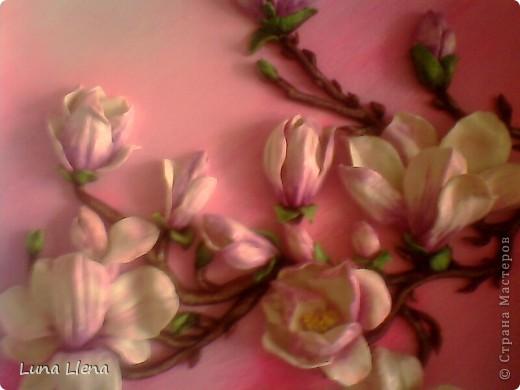Цвет магнолии... Глянец нежных лепестков... И румянец чувств...  Зорьки солнечной Потаённая любовь!!! Потайная грусть!!! (Е.Буторина, отрывок)  фото 8
