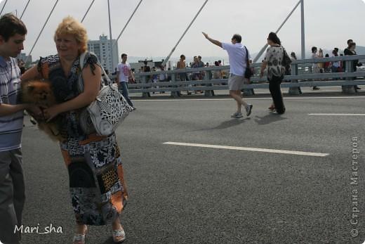 УРА! Во Владивостоке открыли мост через Золотой Рог. На выходные (11 и 12 августа) его открыли только для пешеходов, а с понедельника по нему уже пустили автомобили. фото 5