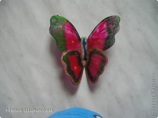 На досуге решили с детьми сделать бабочек. Их здесь в СМ много, покажем и мы своих. фото 5