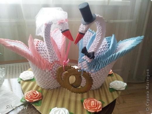 Лебеди - жених и невеста фото 1