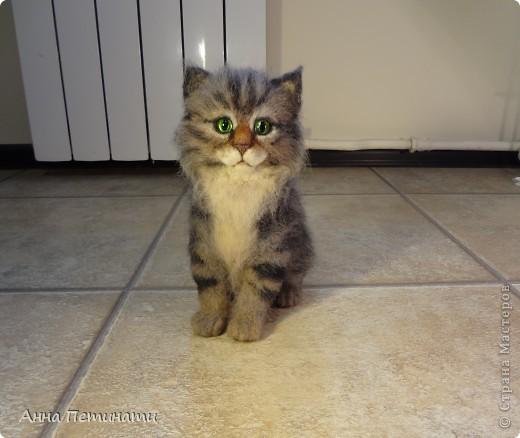 """Котик""""Кныш""""...Сделан на заказ по мотивам """"Тигги"""" фото 2"""