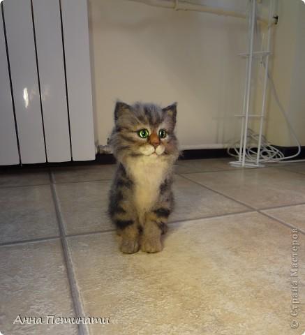 """Котик""""Кныш""""...Сделан на заказ по мотивам """"Тигги"""" фото 3"""