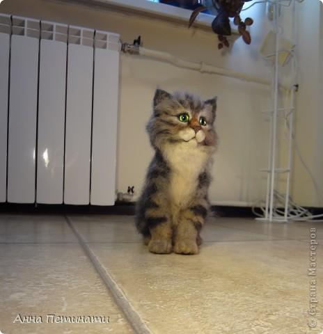 """Котик""""Кныш""""...Сделан на заказ по мотивам """"Тигги"""" фото 4"""