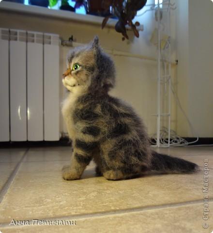 """Котик""""Кныш""""...Сделан на заказ по мотивам """"Тигги"""" фото 9"""