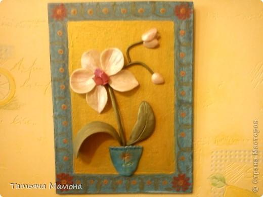 Розовый фаленопсис фото 3