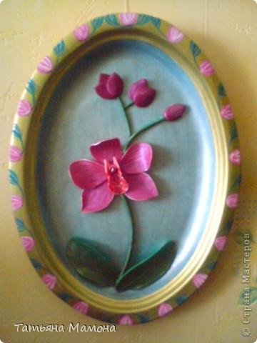 Розовый фаленопсис фото 1