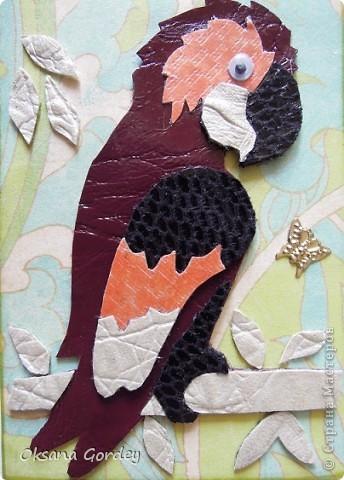 Сделала еще немного попугайчиков, уже давно имеют своих хозяек и, надеюсь, что все получили или получат в ближайшее время, т.к. карточки уже давно в пути. Попугайчики в точечной технике были сделаны для ЛЁКА ЛЁКИНА, Алина@ и Nikolka. фото 7