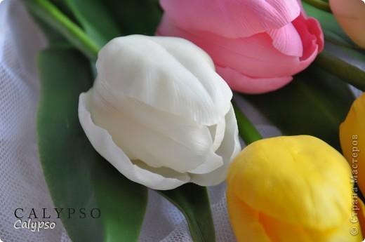 Мои самые первые тюльпаны) фото 3