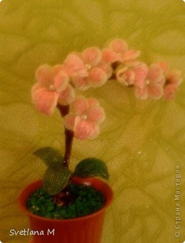 Бисероплетение - Орхидея Розовый Гламур из бисера.