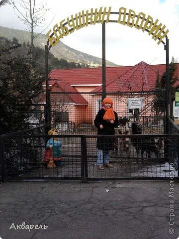 Так сложилось, что мы решили поехать в отпуск, в Крым. Тем более я так давно не была там зимой. И не пожалели. Мне кажется отдых удался на славу. Мы гуляли так много, как летом не гуляли. Все таки летом больше купание в море. Куда мы только не ходили. И старались больше пешком. Ну конечно, куда можно нам дойти. В один из этих счастливых дней, мы посетили Ялтинский зоопарк. там мы были не раз летом. Но межсезонье имеет свои преимущества. Не жарко, не людно, много малышей-зверей. И животные чувствуют себя гораздо вольнее и комфортнее. В этом зоопарке животных можно кормить, есть приспособления, а не хищников и птиц можно кормить прямо из рук. Корма для всех видов продаются при входе. Скажу по секрету, семечек не жаренных, зелени и хлебушка можно взять с собой.  фото 20