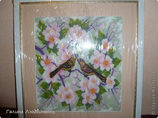 Всем добрый день! Представляю вам свои вышитые картины.  1.Букет полевых цветов. Картина вышита крестиком. фото 3