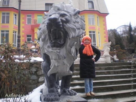 Так сложилось, что мы решили поехать в отпуск, в Крым. Тем более я так давно не была там зимой. И не пожалели. Мне кажется отдых удался на славу. Мы гуляли так много, как летом не гуляли. Все таки летом больше купание в море. Куда мы только не ходили. И старались больше пешком. Ну конечно, куда можно нам дойти. В один из этих счастливых дней, мы посетили Ялтинский зоопарк. там мы были не раз летом. Но межсезонье имеет свои преимущества. Не жарко, не людно, много малышей-зверей. И животные чувствуют себя гораздо вольнее и комфортнее. В этом зоопарке животных можно кормить, есть приспособления, а не хищников и птиц можно кормить прямо из рук. Корма для всех видов продаются при входе. Скажу по секрету, семечек не жаренных, зелени и хлебушка можно взять с собой.  фото 1