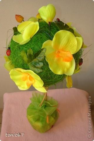 Вот такое вот деревце.   Использовала кокосовое волокно, цветы и листочки  искусств. фото 2