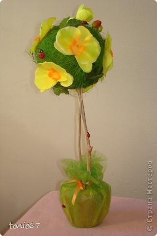 Вот такое вот деревце.   Использовала кокосовое волокно, цветы и листочки  искусств. фото 1