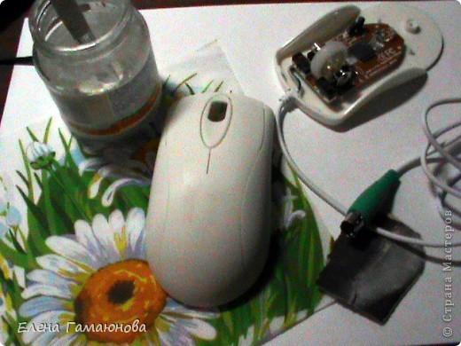 2 мышки фото 1