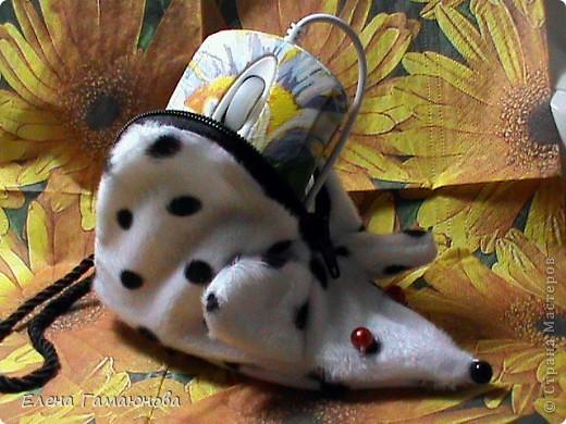 2 мышки фото 6