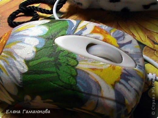 2 мышки фото 7