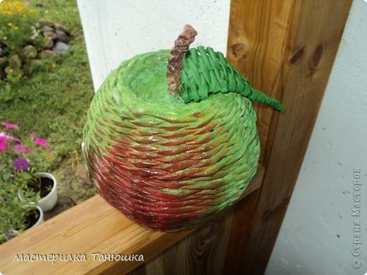 Вчера был Яблочный Спас, вот и моё яблочко появилось. фото 2