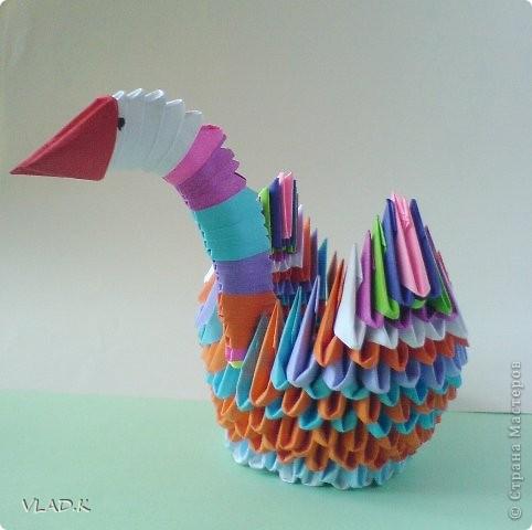 Лебедь. фото 4