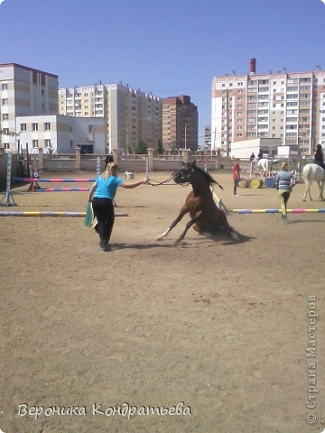 """Я где-то пол года назад пошла на конный спорт, и там есть такой коняшка по имени """"Араб"""". Арабской породы.) Один из моих любимчиков. Ну вот недавно сходила я на конюшню и сфотографировала Араба. К сожалению фоточка не очень, и рисовать трудно из далека. А приблизишь так вообще ничего не видно =(  фото 4"""