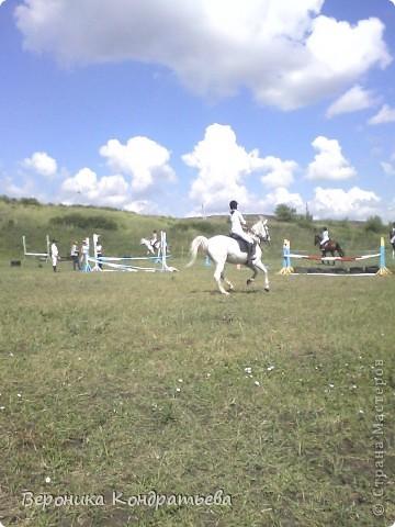 """Я где-то пол года назад пошла на конный спорт, и там есть такой коняшка по имени """"Араб"""". Арабской породы.) Один из моих любимчиков. Ну вот недавно сходила я на конюшню и сфотографировала Араба. К сожалению фоточка не очень, и рисовать трудно из далека. А приблизишь так вообще ничего не видно =(  фото 12"""