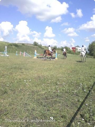 """Я где-то пол года назад пошла на конный спорт, и там есть такой коняшка по имени """"Араб"""". Арабской породы.) Один из моих любимчиков. Ну вот недавно сходила я на конюшню и сфотографировала Араба. К сожалению фоточка не очень, и рисовать трудно из далека. А приблизишь так вообще ничего не видно =(  фото 9"""