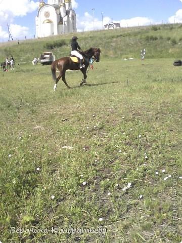 """Я где-то пол года назад пошла на конный спорт, и там есть такой коняшка по имени """"Араб"""". Арабской породы.) Один из моих любимчиков. Ну вот недавно сходила я на конюшню и сфотографировала Араба. К сожалению фоточка не очень, и рисовать трудно из далека. А приблизишь так вообще ничего не видно =(  фото 11"""