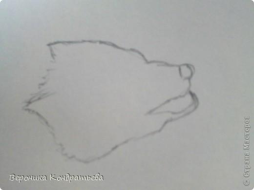 Попробуем нарисовать вот таких волков гуашью?  У меня это первый эксперимент, не судите строго...) В этой картине я немного поиграю с положением хвостов, ну и немного лап.) фото 2