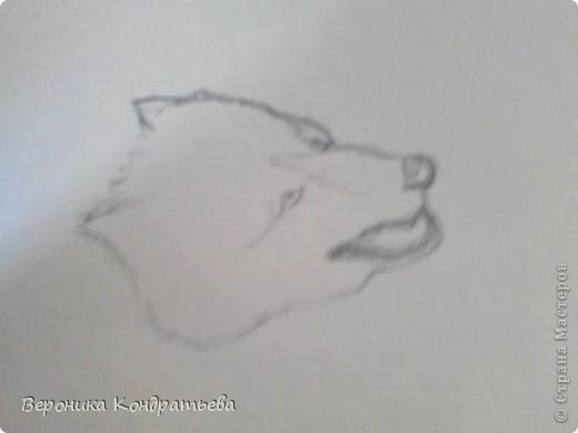 Попробуем нарисовать вот таких волков гуашью?  У меня это первый эксперимент, не судите строго...) В этой картине я немного поиграю с положением хвостов, ну и немного лап.) фото 3