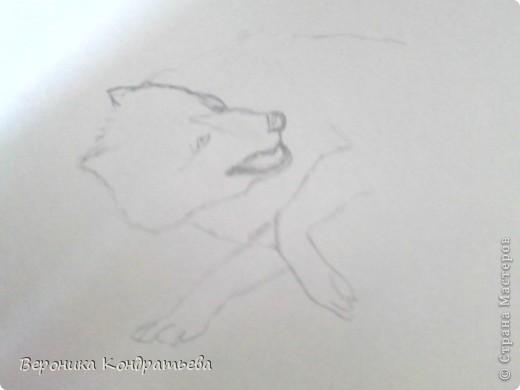 Попробуем нарисовать вот таких волков гуашью?  У меня это первый эксперимент, не судите строго...) В этой картине я немного поиграю с положением хвостов, ну и немного лап.) фото 4