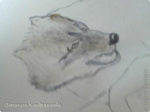 Попробуем нарисовать вот таких волков гуашью?  У меня это первый эксперимент, не судите строго...) В этой картине я немного поиграю с положением хвостов, ну и немного лап.) фото 11