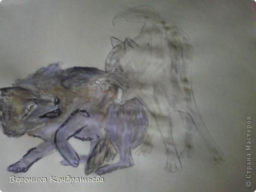Попробуем нарисовать вот таких волков гуашью?  У меня это первый эксперимент, не судите строго...) В этой картине я немного поиграю с положением хвостов, ну и немного лап.) фото 23