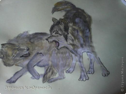 Попробуем нарисовать вот таких волков гуашью?  У меня это первый эксперимент, не судите строго...) В этой картине я немного поиграю с положением хвостов, ну и немного лап.) фото 29