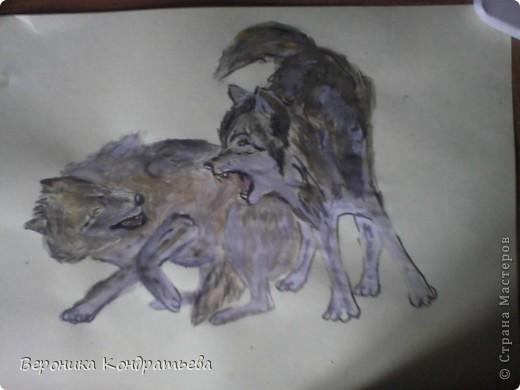 Попробуем нарисовать вот таких волков гуашью?  У меня это первый эксперимент, не судите строго...) В этой картине я немного поиграю с положением хвостов, ну и немного лап.) фото 30