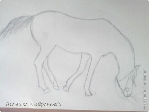 """Я где-то пол года назад пошла на конный спорт, и там есть такой коняшка по имени """"Араб"""". Арабской породы.) Один из моих любимчиков. Ну вот недавно сходила я на конюшню и сфотографировала Араба. К сожалению фоточка не очень, и рисовать трудно из далека. А приблизишь так вообще ничего не видно =(  фото 2"""