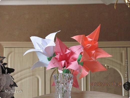 http://planetaorigami.ru/2011/02/bumazhnye-cvety-liliya-origami-sxema-i-video-sborki/ вот здесь схема. фото 2