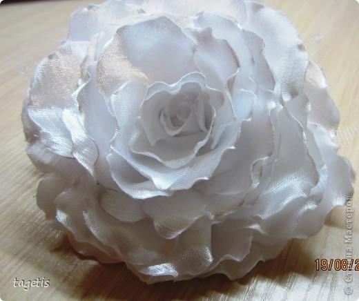 Все готовятся к 1 сентября и я туда же... Мои любимые розы  (каждой по две, все на резинках)  фото 5